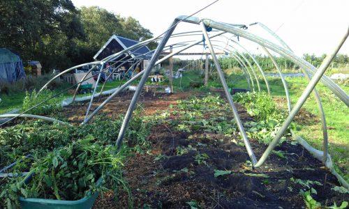 tuin-naast-de-branding-na-de-windhoos